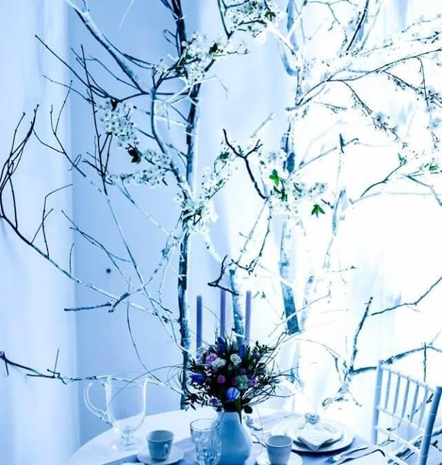 Оренда меблів для весілля: наші роботи на презентації  IREN Wedding planner & consultant